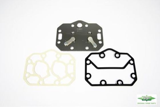 Picture of 304059-09  VALVE PLATE COMPLETE GASKET